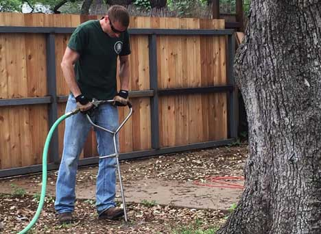 Tree Fertilization Austin, TX