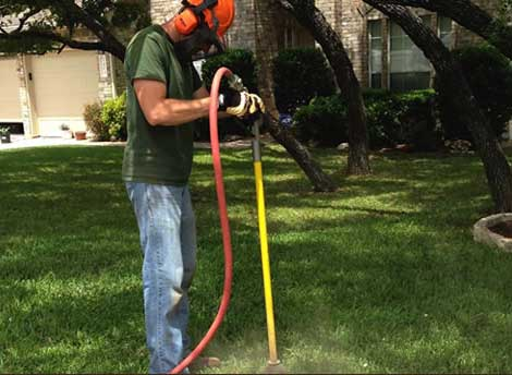 Tree Soil Aeration Services Austin TX
