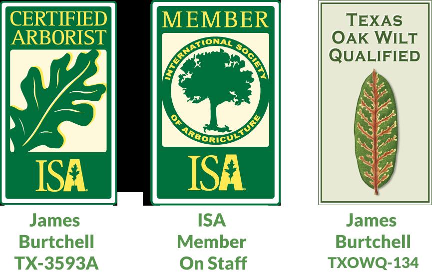arborist certifications